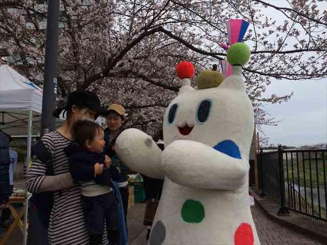 吉田大橋さくら祭り