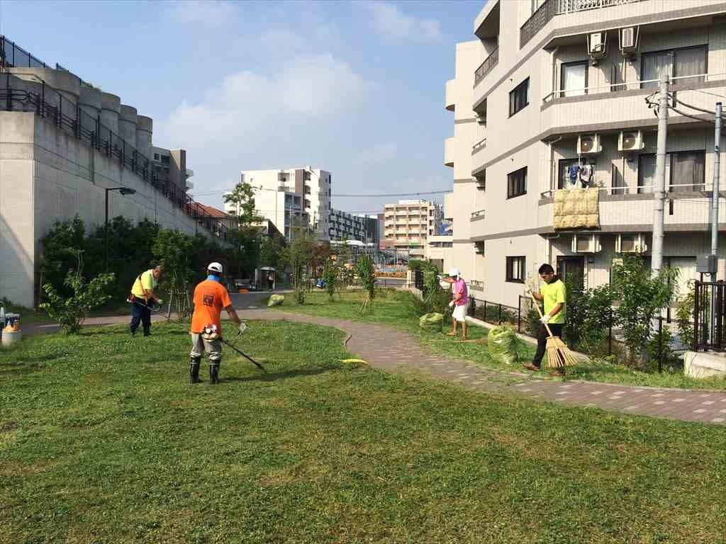 矢部トンネルの丘公園 清掃活動 2015/07/31