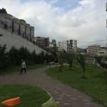トンネルの丘公園の草刈り